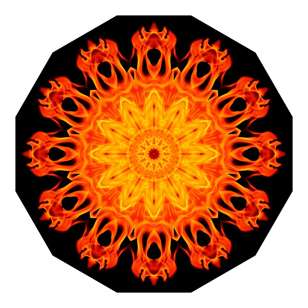 Feuerblume 02